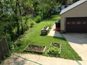 An image of Taras' garden at home