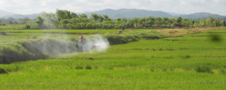 Pesticide Trade Lab